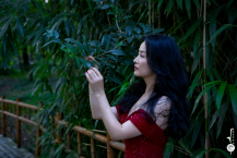 Lin Bao